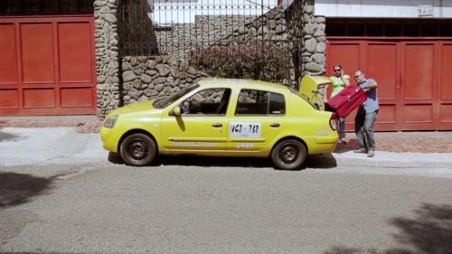 """Quirovita """"Taxi Driver"""""""